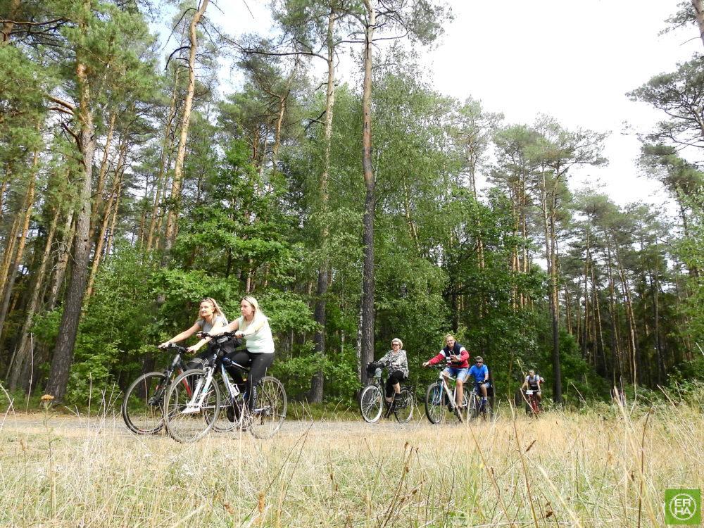 Wycieczka ER-HA Rowery i Przyjaciele - Droga przez las 2 fot. Piotr Zapała Pociąg do Kolumny